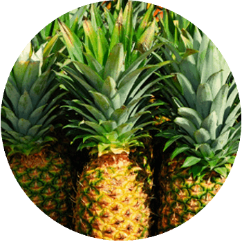 bromelaine.png