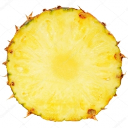 fructus+pineapple__250px.jpg